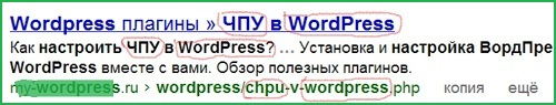 настройка ЧПУ В CMS WordPress
